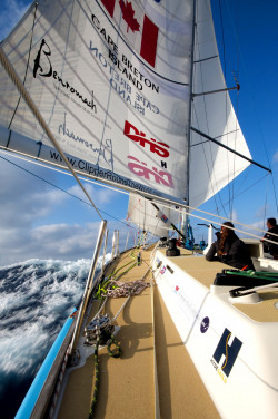 sails06