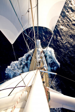 sails14