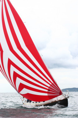 sails16